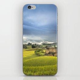 Vietnam Rice Cultivation iPhone Skin