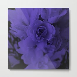 PURPLE NARDS Metal Print