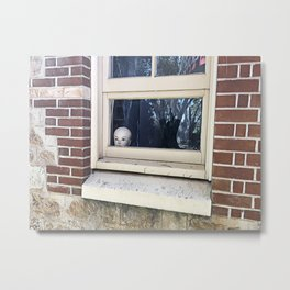 Mindful Escape (or Social Distancing for Dummies) Metal Print