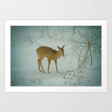 Deer Winter Art Print
