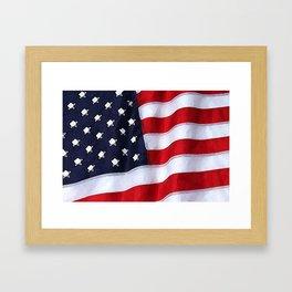 Fancy Flag:  USA 2 Framed Art Print