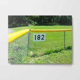 blink 182's baseball field Metal Print