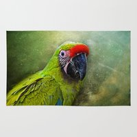 parrot Area & Throw Rugs featuring parrot by lucyliu