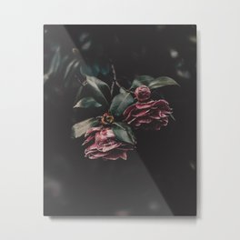 Camelia Flowers Metal Print