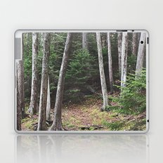 Maine Woods Laptop & iPad Skin