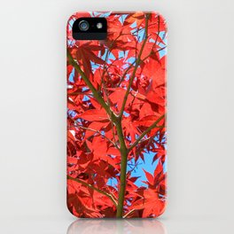 Reds of Fall - 1 iPhone Case