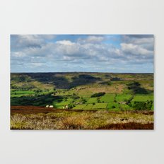A Sheep's Life Canvas Print