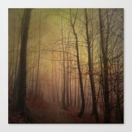 estranged - misty hike Canvas Print