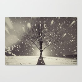 The Fury of Winter Canvas Print