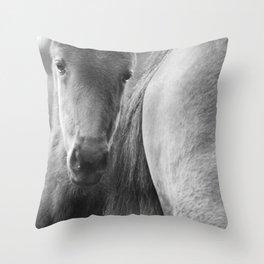 Original horses photo. Black & White, fine art, animal photography, landscape, b&w Throw Pillow
