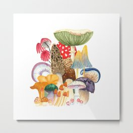 Woodland Mushroom Society Metal Print