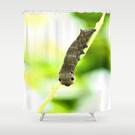 Caterpillar On A Green Plant #decor #society6 Shower Curtain