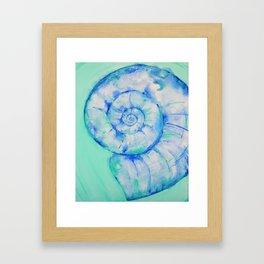 Blue Moon Shell Framed Art Print