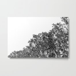 Read leaves I ( black and white ) Metal Print