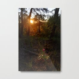 """Flower Into The Woods"" Happy Peony looking for the last sun.. Metal Print"
