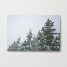 Fading Trees / Part II Metal Print