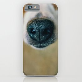 Dog face iPhone Case