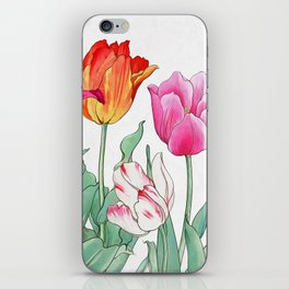 Tulips garden iPhone Skin