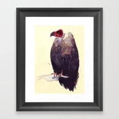 Vulture Framed Art Print