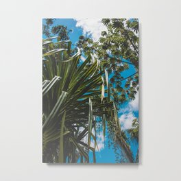 Tropical Canopy Metal Print
