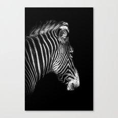 White Stripes Black Stripes Canvas Print