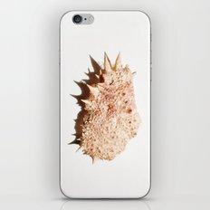 Big crab iPhone & iPod Skin