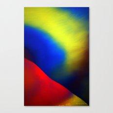 Aurore Boréale Canvas Print