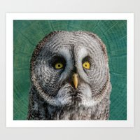 grey Art Prints featuring GREY OWL by Catspaws