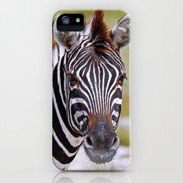 The Zebra iPhone Case