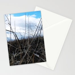 Mouse Eye View Stationery Cards