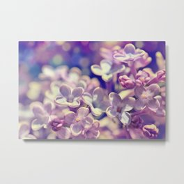 Spring 301 lilac Metal Print