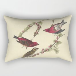 AUDUBON Bird Print Purple Finch Pinus Pendula lithograph color engraving Download Vintage Old Antique Rectangular Pillow