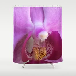 spring orchid Shower Curtain