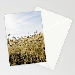 Lagurus ovatus Stationery Cards