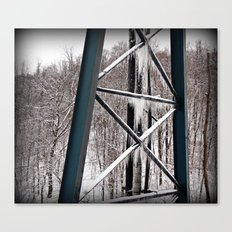 Beauty Like Ice Canvas Print