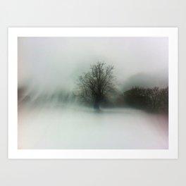 Cold Snap   1   Art Print