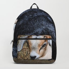Baby Goats in the Barn Backpack