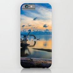Driftwood Sunset iPhone 6s Slim Case