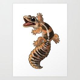 African Fat-Tail Gecko Art Print