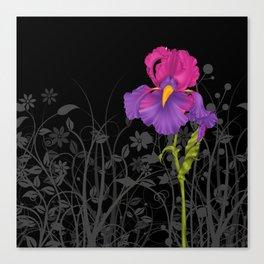 Iris purple Canvas Print