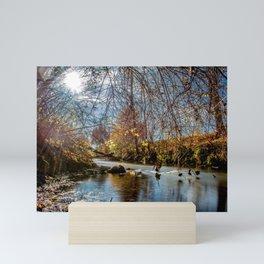 Baden-Württemberg : Water scenery Mini Art Print