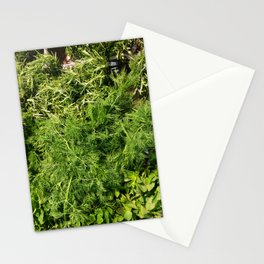 Green Vegetable Herbs Stationery Cards