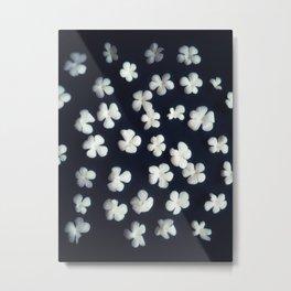 White petals 5 Metal Print