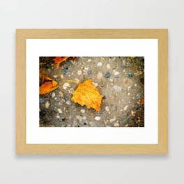 """Autumn Leaf"" Framed Art Print"