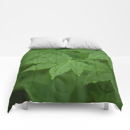 Rainy Leaves Comforters