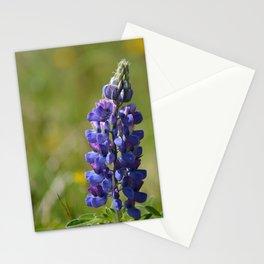 Nootka Lupine Stationery Cards
