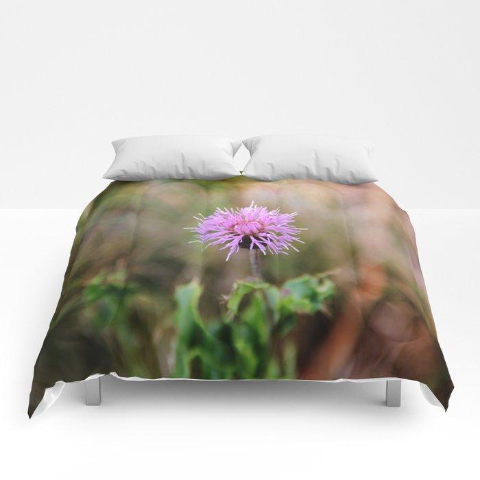 PINK PAIN. Comforters