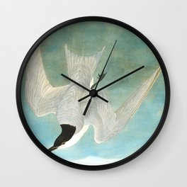 Marsh Tern Wall Clock