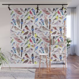 Pet and wild birds of America Wall Mural