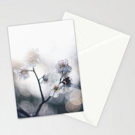 Kira-kira Stationery Cards